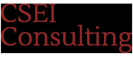 CSEI Consulting